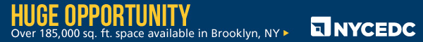 New York City Economic Development Council Banner Ad