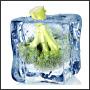 Frozen broccoli in an ice cube