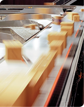 Automated Conveyor Sortation in a Distribution Center